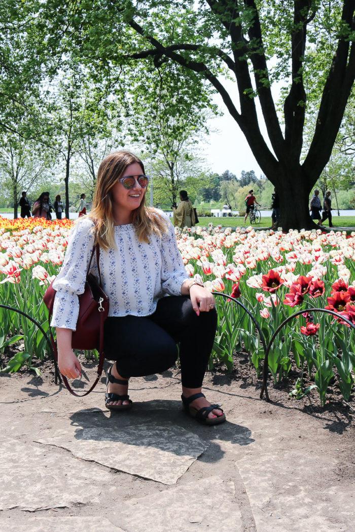 The Canadian Tulip Festival, Ottawa