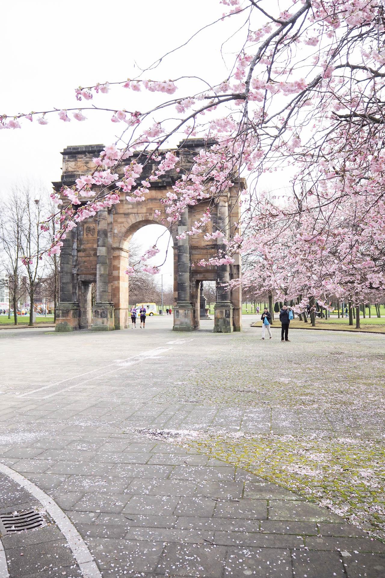 spring fashion cherry blossom