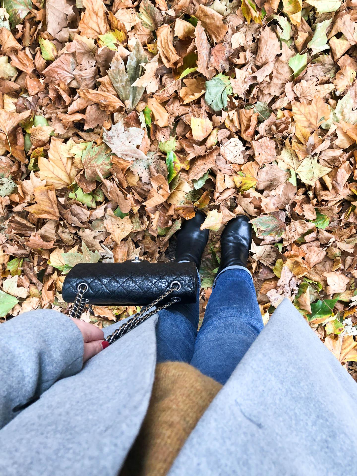 autumn plans